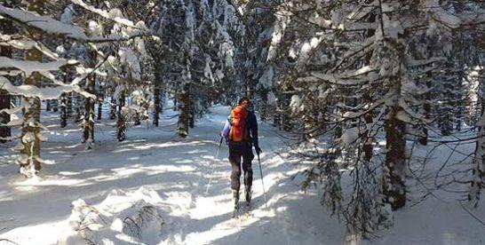 Ferienhäuser an der Skilanglauf-Loipe