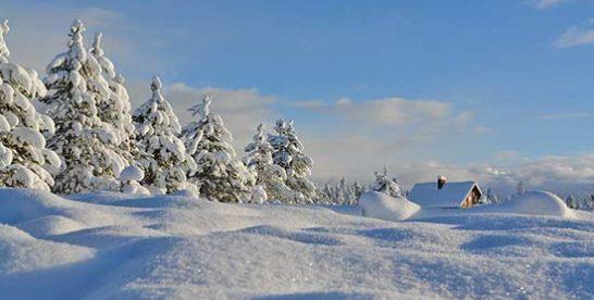 Ferienhaus & Ferienwohnung im Skigebiet für Skiurlaub buchen